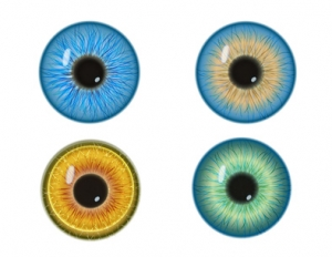 Etude sur la santé visuelle