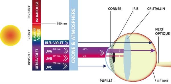 schema-oeil-solaire-UV